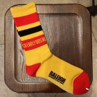 "他の写真3: 【再入荷】RALEIGH""EXCITEMENT OF EARLY80'S RALEIGH"" SK-8 SOX"